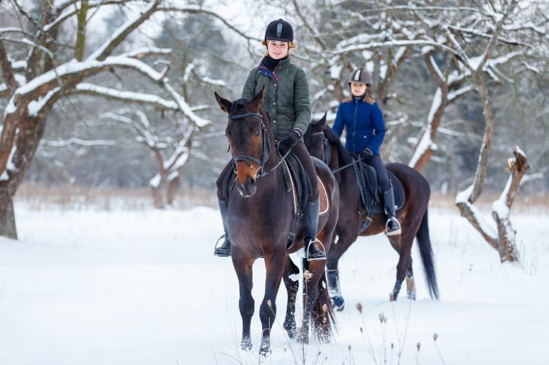 Zimowisko i obóz konny w Beskidach - Jeździecka zima